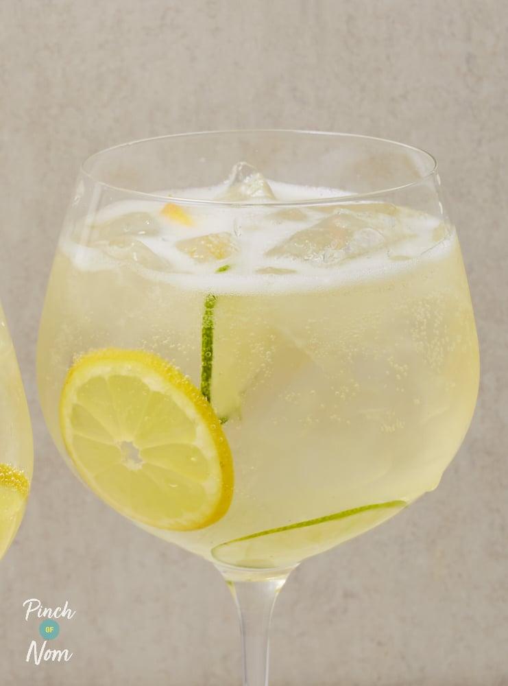 Elderflower Gin Fizz - Pinch of Nom Slimming Recipes
