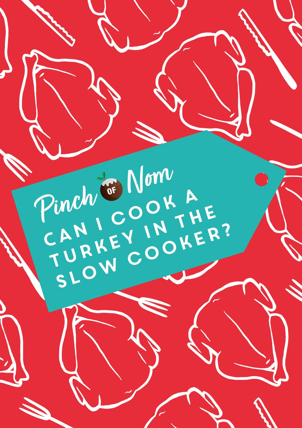 Can I Cook a Turkey in the Slow Cooker? | Pinch of Nom Slimming Recipes